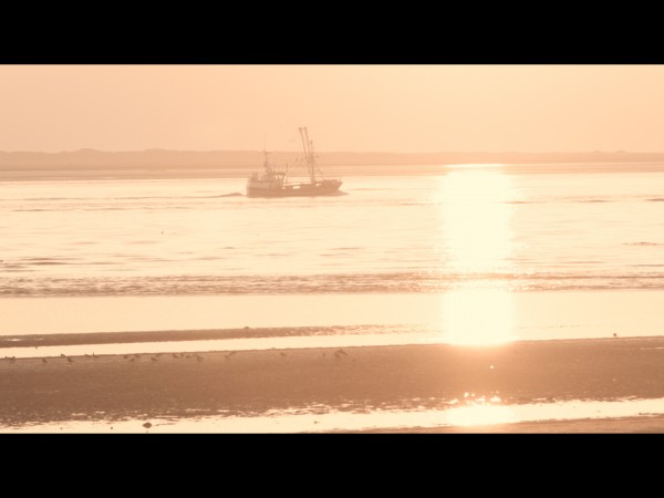 Showreel – Portfolio video